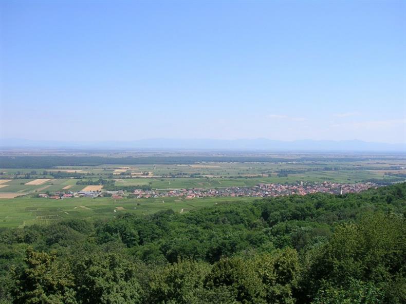 Schauenberg, Pfaffenheim, Canton de Rouffach, Haut-Rhin, Alsace