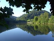 Lac de Lucelle, réserve naturelle