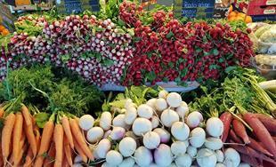 Waldighoffen market