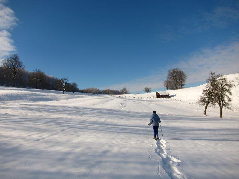 GLASERBERG SNOWSHOE CIRCUIT