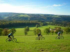 MTB on Winkel heights, Alsatian Jura.