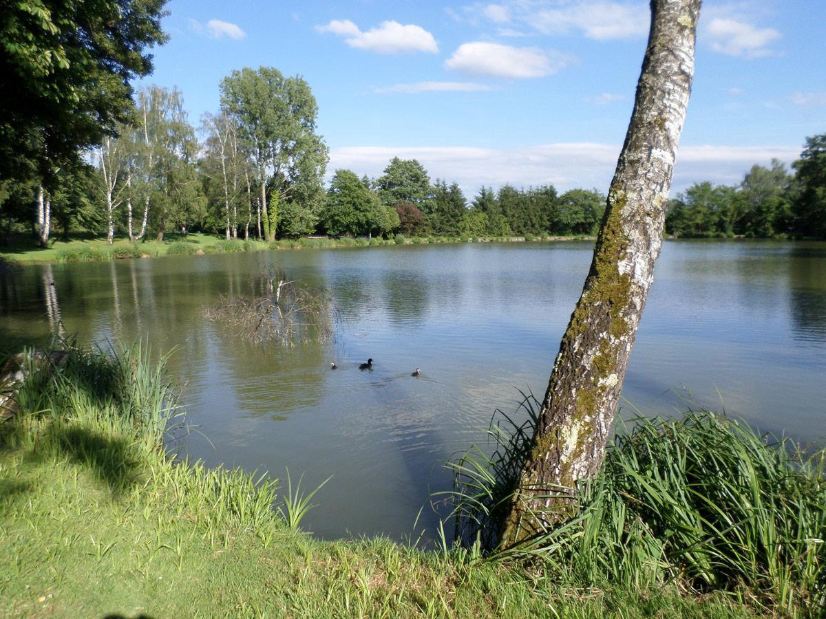 APPMA Balschwiller étang St Pierre