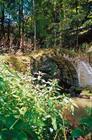 Ancien pont, Lucelle, H.D Fink