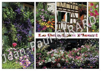 Carte postale Sundgau fleuri