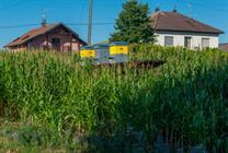 Crédit photo : Klaus STOEBER, Pays du Sundgau
