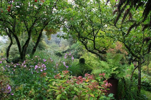 Le jardin de Brigitte