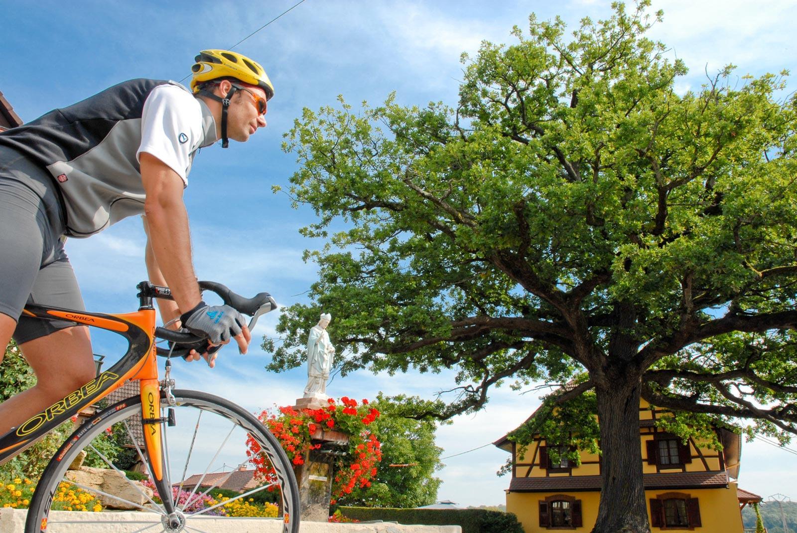 Fahrradtour im Sundgau n°3 : Im Land der Teiche