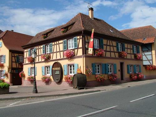 GAEC Mosbach, viticulteur à Marlenheim