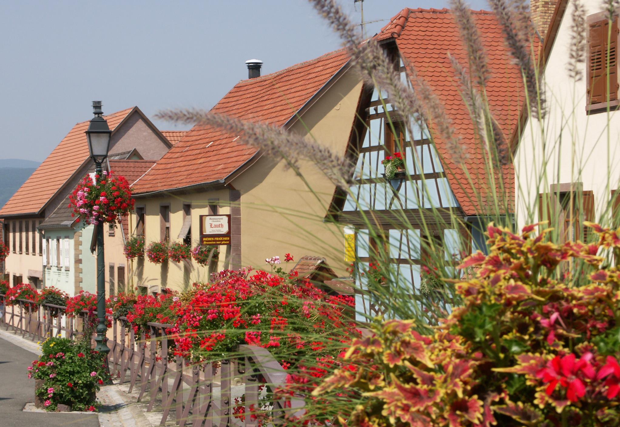 Balade ludique à Scharrachbergheim