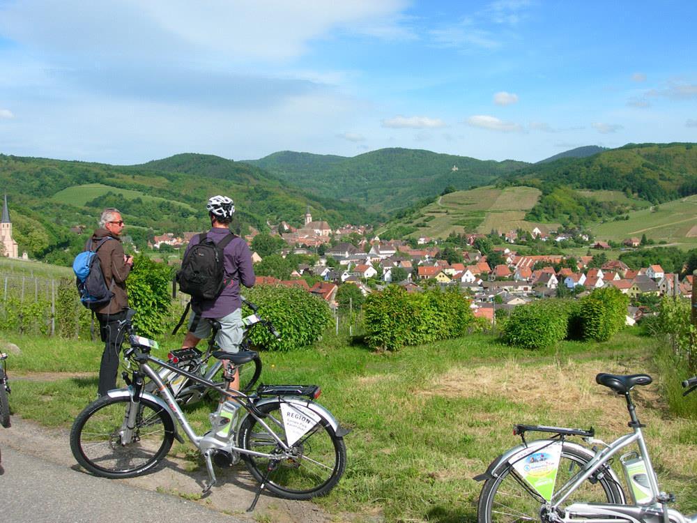 La Véloroute du Vignoble d'Alsace
