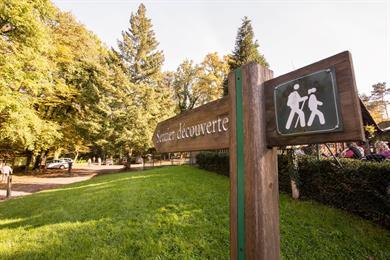 La Forêt d'Exception® de Haguenau - N°20 : Le sentier de découverte