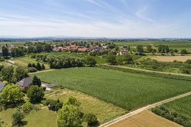 Kriegsheim