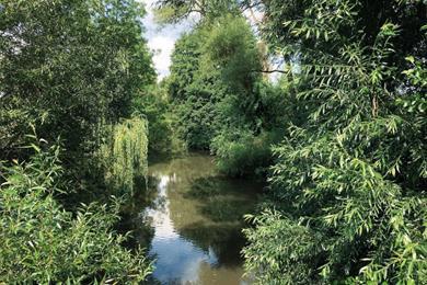 La Forêt d'Exception® de Haguenau - N°10 : Le parcours permanents
