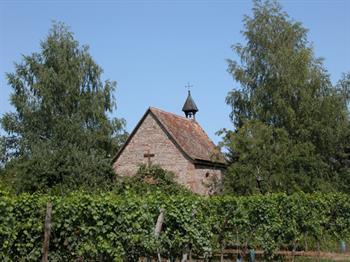Sentier viticole d'Ergersheim