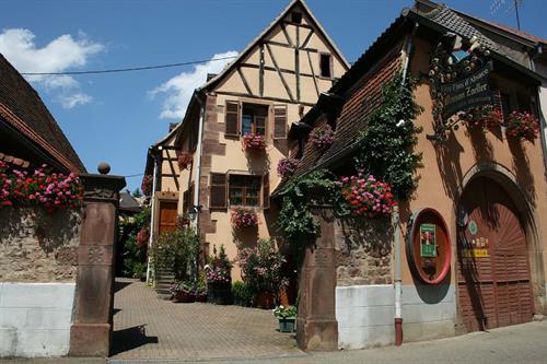 Vins Zoeller à Wolxheim