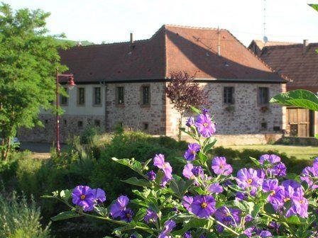 Meublé au Domaine des Hirondelles - Gîte du Puits