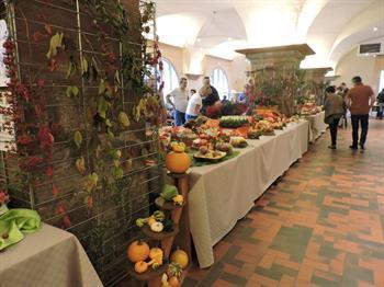 Grape festival - Exhibitions
