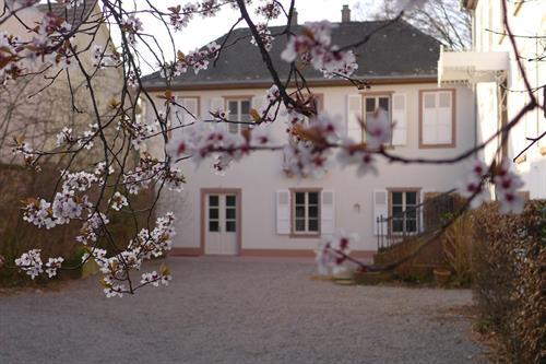 Maison carré à Wolxheim - Crédit photo : Office de Tourisme de la Région de Molsheim-Mutzig