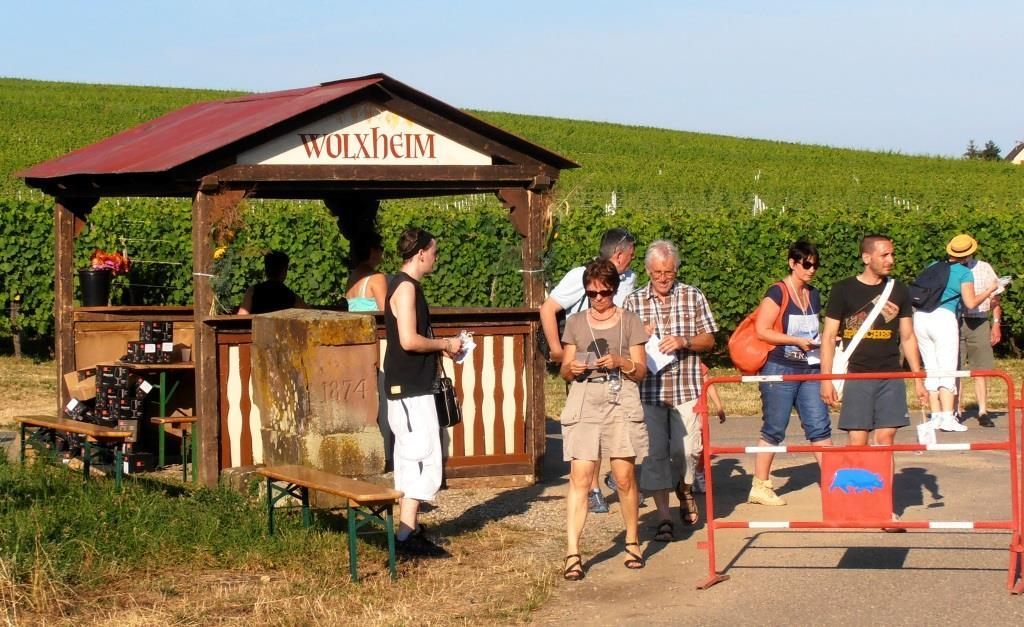 Marche gourmande au temps de Wolxheim