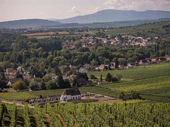Visite libre dans le village viticole de Wolxheim
