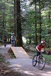 Easy bike park - parcours d�habilet� VTT