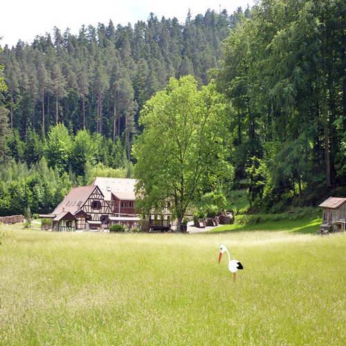 Meublés du Domaine de la Mossig