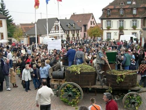 Ville de Marlenheim