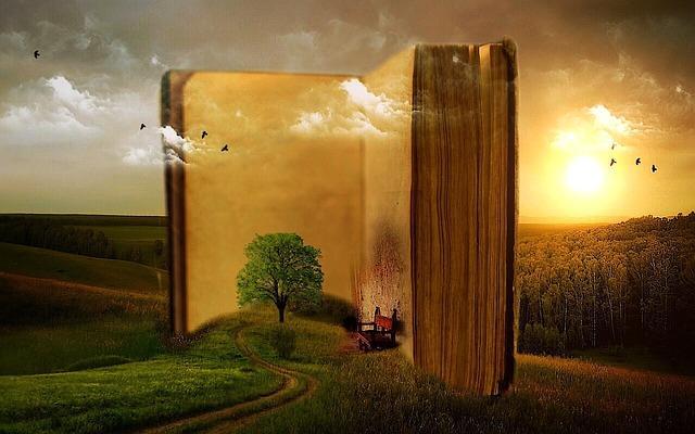 Soiré conte : Un arbre merveilleux