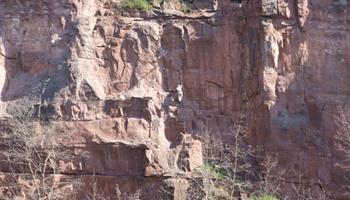 Site d'escalade du Kronthal