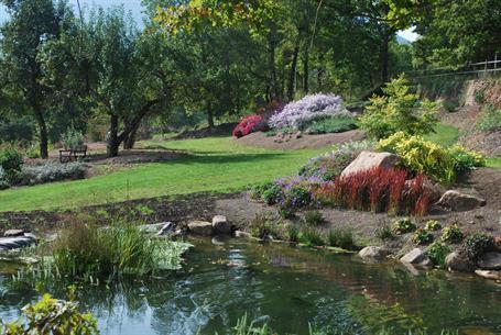 Gartenfeste - Lilaveronica