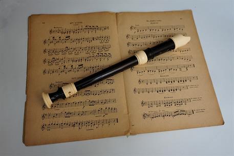 Konzert der Vögel