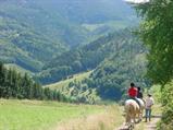Equitation à Hergauchamps