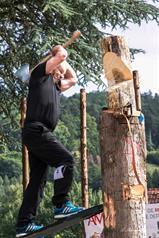 STORNIERUNG Holzfest in...