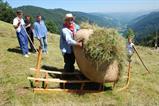 Exposition : l'agriculture en Val...