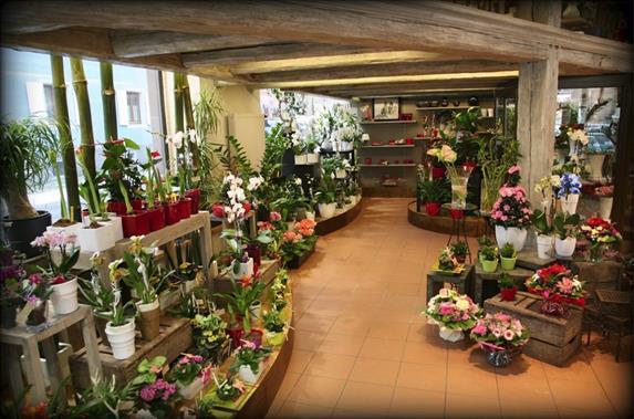 Fleurs Jehl - Aux Floralies