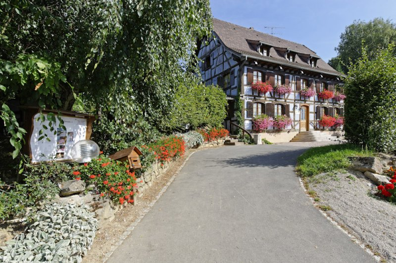 Ferme-Auberge Uff Rain - Valle de Munster - Haut-Rhin - Alsace