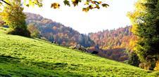 Bienvenue dans le Val d'Argent, terre alsacienne au coeur du Massif des Vosges