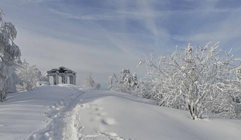 Ski de fond au Donon