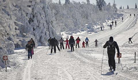 Ski de fond au Champ du Feu