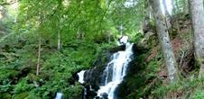 The Serva waterfalls