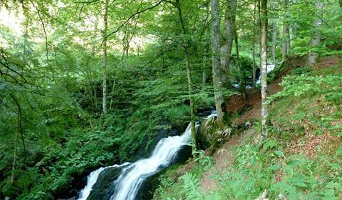 Ruisseau de La Serva