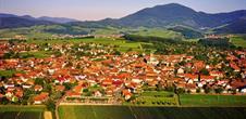Epfig: Weinlehrpfad von Fronholz