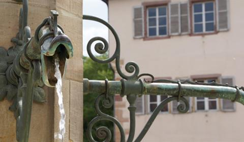 Détails de laontaine Schwendi sur la place de l'Ancienne Douane (OT Colmar)