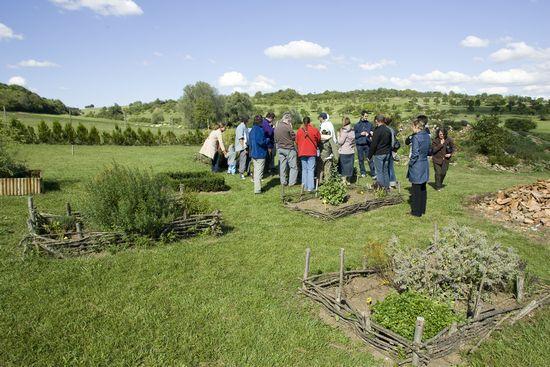 Le jardin gallo-romain du Gurtelbach