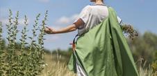 Sur le chemin des saveurs antiques