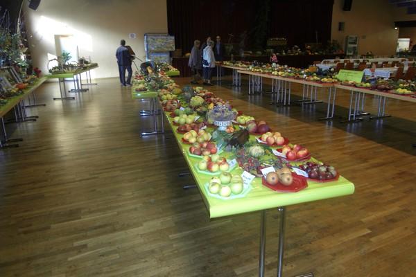Exposition fruitière