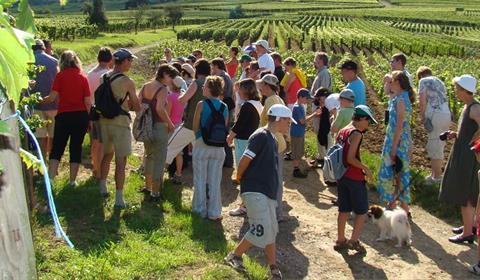 Office de tourisme de colmar en alsace sentier viticole des grands crus d 39 eguisheim - Office de tourisme eguisheim ...
