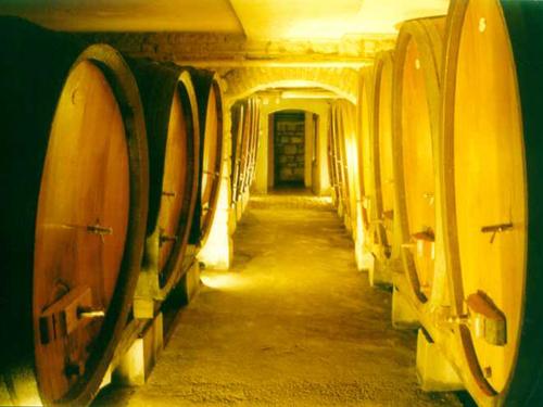 Cave, Pays de Rouffach, Vignobles et Châteaux, Haut-Rhin, Alsace