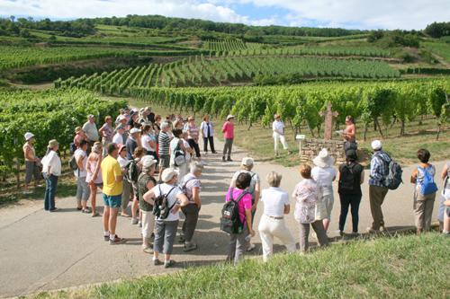 Visites guidées, Pays de Rouffach, Vignobles et Châteaux, Haut-Rhin, Alsace