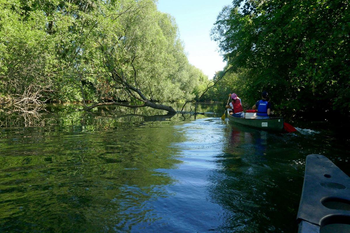 Fiche descriptive - Canoë Kayak Club de l'Ill Sélestat - CAKCIS (Selestat) - Grand Ried en Alsace - Bas-Rhin